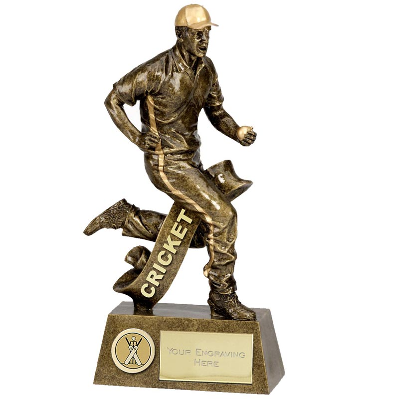 Pinnacle6 Fielding Cricket